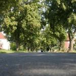 Schulenburg-Nord