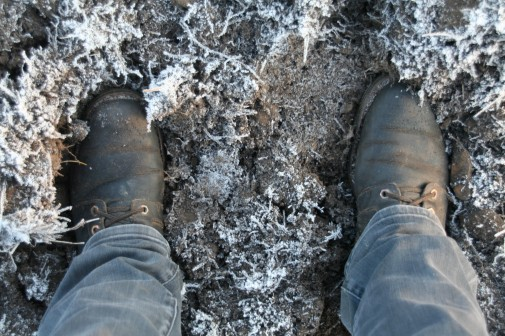 Ein letztes Mal verschlammte Schuhe mit Blick auf Bruch: Für dieses Jahr haben die Abbruchbagger Pause im kümmerlichen Rest des Noch-Dorfes.